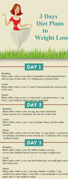3 Days Diet Plans to Weight Loss