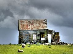Old house, SH1, North Bulls, Manawatu, New Zealand by brian nz, via Flickr .... our house !! sheep as well, what more could you want ...