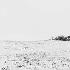 Snowy field no. 466385. #snowy #field #landscape #bloodycold #snow #blackandwhite #bnw #bnwphotography #monochrome #monotone #northumberland #northumbria #notderbyshire