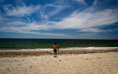 Take me back to this beautiful day of beach weather! Surf Drive Beach, Falmouth