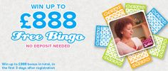 Ladies: Play Bingo Online Now! At 888Ladies by clicking http://bestbingosite.org/888-ladies/