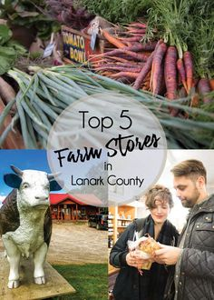 If you're looking for local farm-fresh products, you don't need to travel any further than scenic Lanark County, where you can experience the best of Mother Nature's bounty, all year long. Renowned for its picturesque fields and small farms, farm-fresh… Seasonal Fruits, Fruits And Vegetables, Cheese Brands, Fresh Products, Country Stores, Cute N Country, Seven Wonders, Meat And Cheese, Rare Flowers