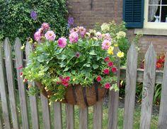 flower-box-on-picket-fence.jpg (1921×1497)