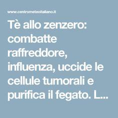 Tè allo zenzero: combatte raffreddore, influenza, uccide le cellule tumorali e purifica il fegato. La ricetta - Centro Meteo Italiano