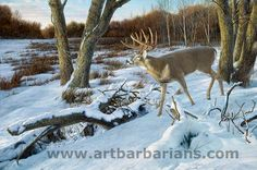 <i>Last Light—Whitetail Deer; </i> Framed Limited Edition Canvas Deer Photos, Deer Pictures, Animal Pictures, Deer Pics, Hunting Art, Hunting Stuff, Whitetail Deer Hunting, Deer Drawing, Antler Art