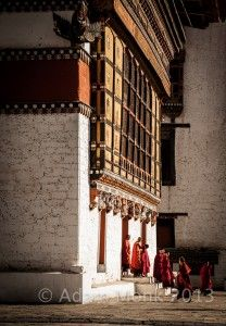 Monks of Thimpu Dzong, Bhutan
