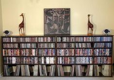 Tips For Choosing The Right DVD Storage For Your DVD Collections: DVD Storage Solution