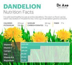 Dandelion tea nutrition - Dr. Axe http://www.draxe.com #health #holistic #natural