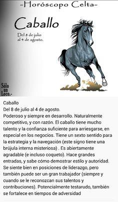 Caballo (8 jul - 4 agos)