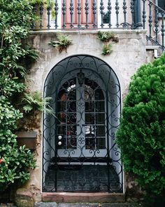 In historic Charleston, an elegantly patterned gate lends a dynamic layer to the windowed entry of a dreamy space.
