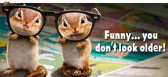 Chipmunk vision