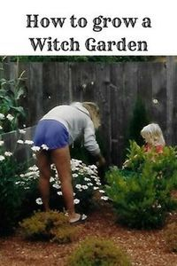 Myths, legends and plants of a traditional witch's garden