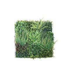 Pacific Silkscapes introduces a new line of boxwood wall mats used to create artificial garden walls. We can also apply to walls and outdoor structures. Artificial Plant Wall, Artificial Boxwood, Boxwood Garden, Ivy Wall, Decorative Wall Panels, Outdoor Walls, Flower Wall, Wall Decor, Herbs