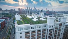 Brooklyn Grange is the World's Largest Rooftop Farm - Google Search