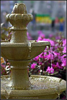 running fountain among flowers.