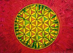 Image result for Flower of Life paintings