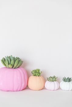 DIY Halloween Pumpkin Succulent Porch Decorations | Best Friends For Frosting