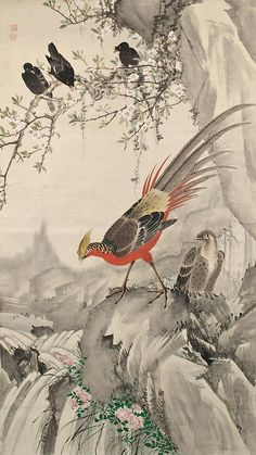 Golden Pheasant (Kinkei).  Ink and color on paper.  About 1820's, Japan, by artist Chô Gesshô