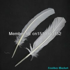 Free Shipping wholesale 50pcs/lot Loose White Hard Rod Turkey feathers For Your Crafts WL-1