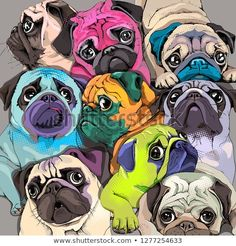 Portrait of many pugs. Composition in a bright coloring Pop Art style. Humor card, t-shirt composition, hand drawn style print. Pet Dogs, Dog Cat, Pets, Wallpaper Kawaii, Small Puppies, Pug Love, Funny Cards, Clipart, Pet Portraits