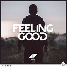 I just used Shazam to discover Feeling Good by Avicii. http://shz.am/t262722696