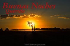 buenas noches querido #amor #miamor #buenasnoches #feliznoche #españa #usa #love #desearbuenasnoches