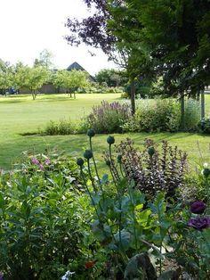 Leuk dat je onze tuin even wilt bekijken.