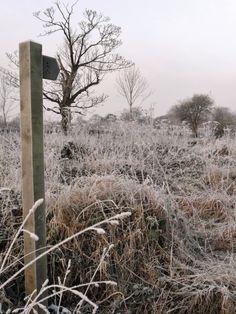 "vwcampervan-aldridge:  "" Frosty & Cold at Park Lime Pits, Aldridge, Walsall  All Original Photography by http://vwcampervan-aldridge.tumblr.com  """