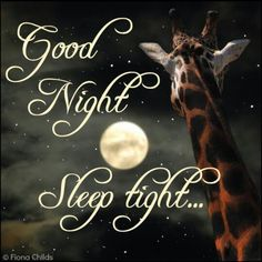 Good night beautiful!!! Sleep well and sweetest of dreams!  Love always your baby!!
