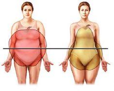 Что местоположение жира на вашем теле говорит о вас — и как с этим бороться Исследователи постарались собрать данные относительно того, на какой части тела расположен жир у человека и сопоставить их с его образом жизни. Согласно этим исследованиям, по расположению жира на т…