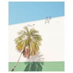 Matthieu Venot (@matthieuvenot) • Instagram photos and videos Matthieu Venot, Photo And Video, Videos, Plants, Photos, Instagram, Flora, Plant, Video Clip
