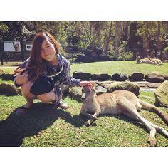 I wish I could go back in time. 先週に戻りたい  #kangaroo #cute #sleepy #rest #touching #currumbinwildlifesanctuary #goldcoast #QLD #australia #野生を忘れた #カンガルー #眠そう #可愛い #カランビン #ゴールドコースト #オーストラリア by _ryoka___ http://ift.tt/1X9mXhV
