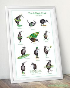 Our athletic kiwi attempts skateboard, but it probably wont be his favorite sport! Funny print for skateboarding fans. >>> Sizes available: > 8 x x cm) > 11 x 14 x cm) > Printed on photographic matte paper > True to my original ink markers drawing, > Kiwi Bird, Bird Poster, Rare Species, Funny Prints, Bird Prints, Athlete, Illustration Art, Wall Art, Drawings