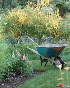 Spring Gardening Tips: Survey the Yard. Order Tools and Plants. Get Ready to Mow. Prune Trees and Shrubs. Take a Soil Test. Prepare New Beds. Start a Compost Pile. Clean Bird Feeders and Baths. Garden Guide, Diy Garden, Garden Care, Spring Garden, Garden Beds, Garden Landscaping, Gardening For Beginners, Gardening Tips, Short Plants