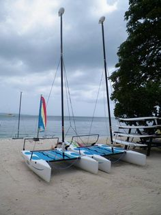 Come sale away with me at Hedonism II - new Hobie Cats!  800 7Classy or www.GoClassy.com #Hedonism#NegrilJamaica#NudeBeach#AllInclusive#Vacation#Lifestyle#TravelAgent