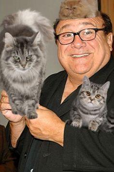 danny devito and cat