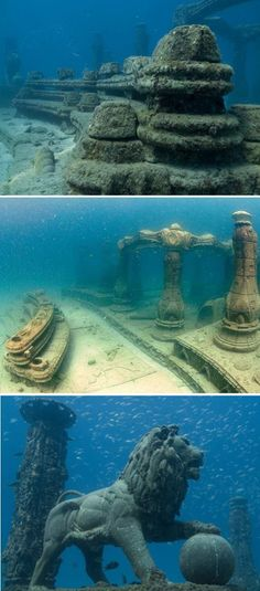 Neptune Memorial Reef, Florida ..want to see it! If I die I want to be here! That way everyone has to dive & have fun to pay respects :)