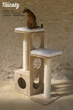 Common Health Problems Of Cats Wooden Cat Tree, Diy Cat Tree, Cat Tree House, Cat House Diy, Tree Bedroom, Cat Climber, Cat Gym, Cat Towers, Cat Stands