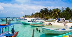 Excursiones en Riviera Maya - Vive Mayan Tours