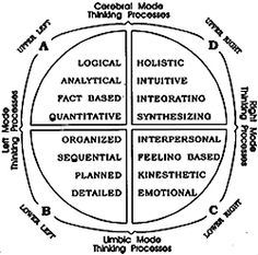 FOUR QUADRANTS define not only the left brain    and right brain modes but also the cerebral and limbic modes.