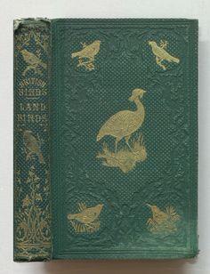British birds. The land birds | Flickr - Photo Sharing!
