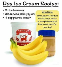 Ice cream should be for everyone, including your puppy young or old. Try this simple and quick recipe for a cool canine treat this summer.
