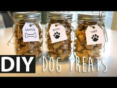 DIY Puppy Popsicles and Summer Treats! // How to make grain-free Kong dog treats and dog popsicles - YouTube