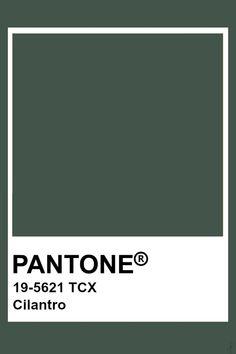 Pantone Cilantro Earthy Color Palette, Colour Pallette, Colour Schemes, Pantone Color Chart, Pantone Colour Palettes, Pantone Colours, Pantone Swatches, Color Swatches, Paleta Pantone