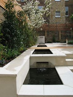 Contemporary garden designed by Charlotte Rowe