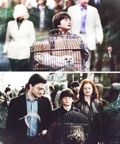 The Potters smiled and waved at Harry and he stared hungrily back at them, his hands pressed flat against the glass as though he was hoping to fall right through it and reach them. He had a powerful kind of ache inside him, half joy, half terrible sadness. - J.K. Rowling