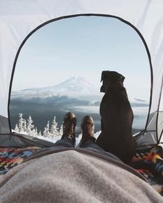 Mountain View From A Tent + Dog.