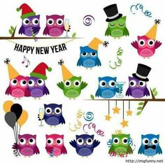 Hoot Hoot Hoot Happy, Happy, Happy New Year 2015!