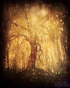 Photo-de-larbre-magique-hearts-arbre-or