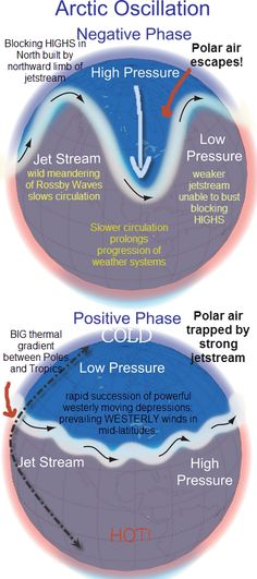 Arctic Oscillaiton (AO): closely related to the North Atlantic Oscillation; where changes in atmospheric pressure between the Arctic and regions to the south causes changes in upper-level westerly winds; during the positive warm phase of the AO, strong pressure differences produce strong westerly winds aloft that prevent cold arctic air from invading the US